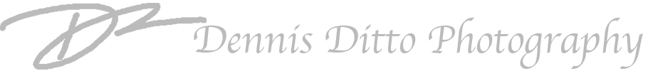 Dennis Ditto Photography